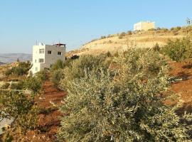 Dana Villa, Jerash