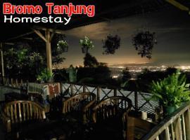 Bromo Tanjung, Tosari