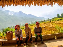 The Little Hmong House