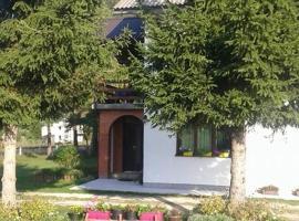Rooms Danica, Donji Babin Potok (рядом с городом Gornji Babin Potok)