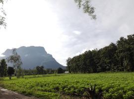 Dreamhome, Chiang Dao