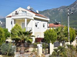 Villa Olive, Uzumlu