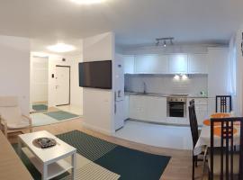Luxury Apartment In Cluj