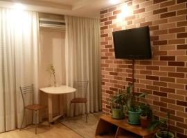 Apartment on Gagarina 33