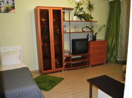 Apartment on Novokosinskaya, Malyye Krutitsy