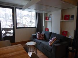 Les Studios du Mont Blanc - Chamonix