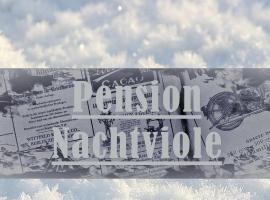 Pension Nachtviole, Hüttau