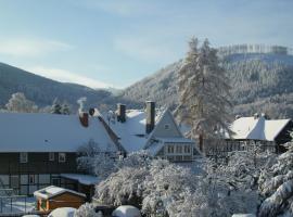 Ferienwohnung Brockenblick