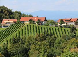 Weingut Sternat vlg. Schmalzpeter, Arnfels (Sankt Johann im Saggautal yakınında)