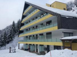 Mountain apartment Innerkrems, Innerkrems