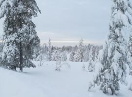 Cozy Arctic House, Рованиеми (рядом с городом Напапиири)