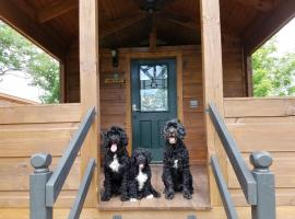 Paradise Cozy Cabins - Dog Friendly, Mill Spring