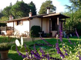 Olive Tree Hill, Zagarolo