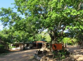 Wild Dogs Safari Lodge