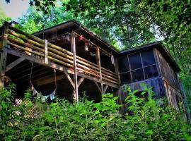 Nahimana Forest, Todd