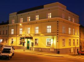 Hotel U Divadla, Znojmo