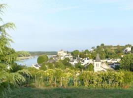 Domaine du Parc, Montsoreau (рядом с городом Varennes-sur-Loire)