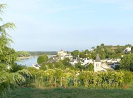 Domaine du Parc, Montsoreau (рядом с городом Turquant)