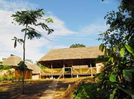 Amazon Dolphin Lodge, Tereré