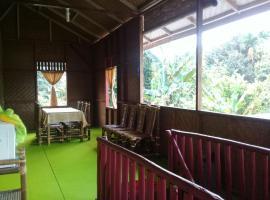 View Homestay Bukitlawang, Bohorok (рядом с городом Timbanglawang)