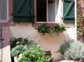 charmant petit appartement en Alsace, Bouxwiller (рядом с городом Neuwiller-lès-Saverne)