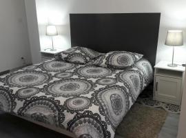 Appartement charmant - Centre Castelnaudary, Кастельнодари (рядом с городом Saint-Papoul)