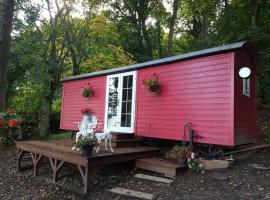 Borthwickbrae Shepherd's Hut, Hawick (рядом с городом Roberton)
