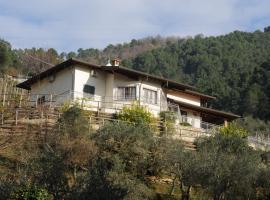 Villa La Selvaccia, Pietrasanta (Strettoia yakınında)