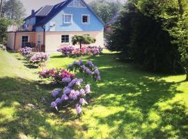Pension Schmidt, Bad Brambach (Mýtinka yakınında)