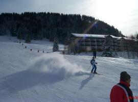 Fewo am Skihang / Bergwiese