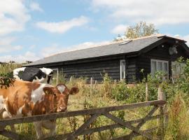 Bull Farm Studios, Винчестер (рядом с городом Саттон-Скотни)