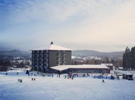 Bergshotellet, Järvsö