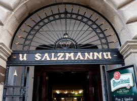 Penzion U Salzmannů