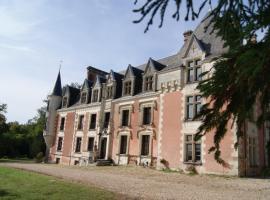 Château de Rys, Bossay-sur-Claise (рядом с городом Paulnay)