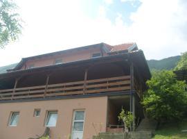 Apartment Dobra vila