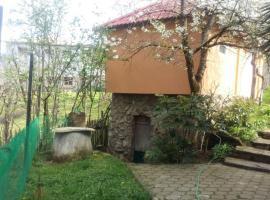 Zeburis house in Keda with too much VINE, Gulebi (рядом с городом K'eda)