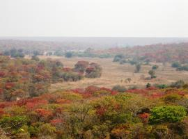 Mutinondo Wilderness, Kaponyamboo