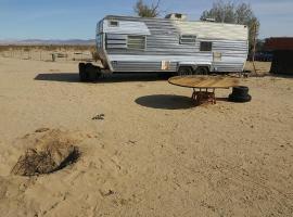 Desert Campfestivities