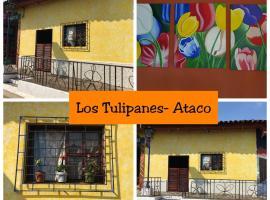Los Tulipanes-Ataco