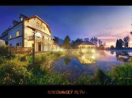 Borovansky mlyn, Borovany
