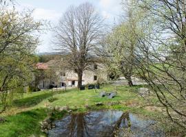 Le Moulin Malin, Saillant (рядом с городом Saint-Anthème)