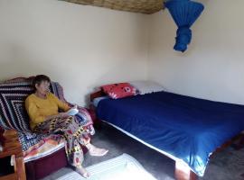 Cozy colorful room, Katoto
