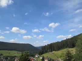 Schöne Ferienwohnung in Baiersbronn, Baiersbronn (Röt yakınında)