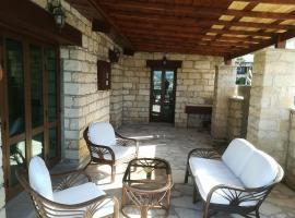 Luxurious Wood 'N' Stone house