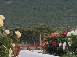 Finca La Rinconada, Каламонте (рядом с городом Лобон)