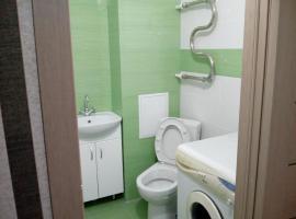 Apartment on Novaya 15