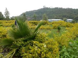 Herfazy Resort, Gonder