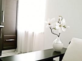 Apartment on Volynska