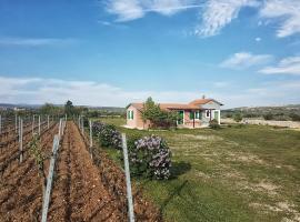 Holiday Home Jona, Benkovac (рядом с городом Lisičići)