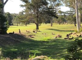 Golf View Motel, Sanctuary Point (Erowal Bay yakınında)